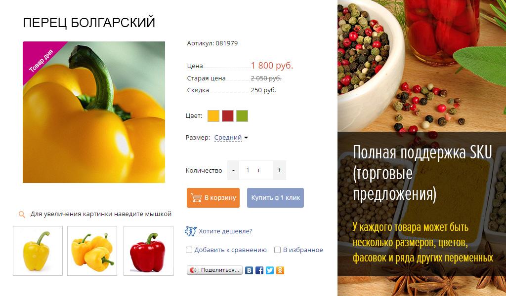 Интернет-магазин одежды, обуви и аксессуаров (рус. + англ.)